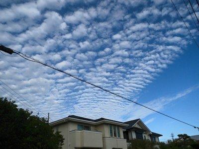 うろこ雲.jpg