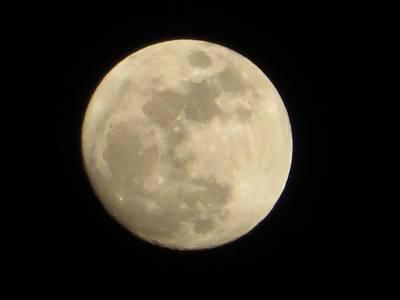 月冴えて.jpg