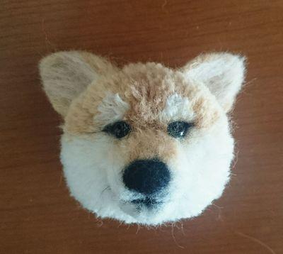 柴犬ぽんぽん.jpg