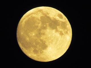満月の道 (2).jpg